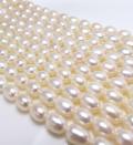 淡水パールビーズ ライス 真珠(ホワイト系)7~8mm玉(1連)