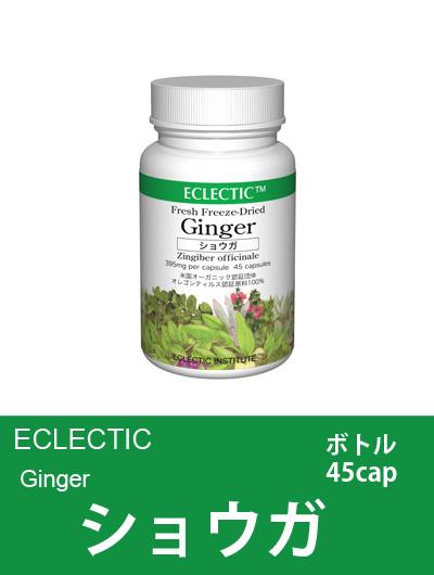 エクレクティック(ECLECTIC) ショウガ ボトル45cap 【オーガニック・ハーブサプリ・カプセル・ムカムカに・冷えに】
