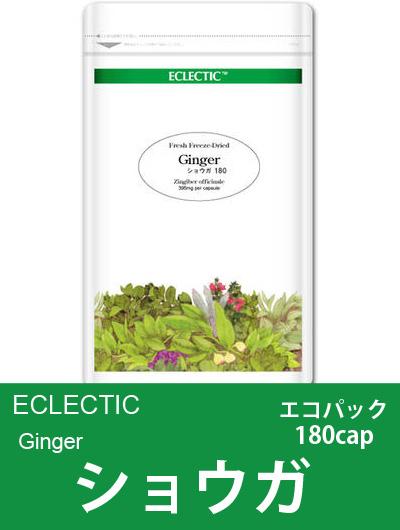 エクレクティック(ECLECTIC) ショウガ Ecoパック180cap 【オーガニック・ハーブサプリ・カプセル・冷え・ムカムカに】