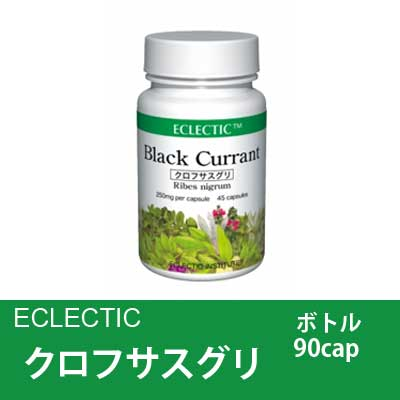 【エクレクティック】 クロフサスグリ油 90cap