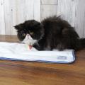 シニア猫用マット