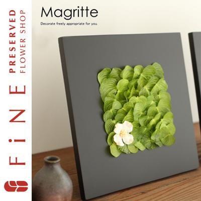マグリットA|インテリアグリーン/壁掛け/観葉植物/開店祝い/開業祝い/ギフト【有料バッグ:M対応】