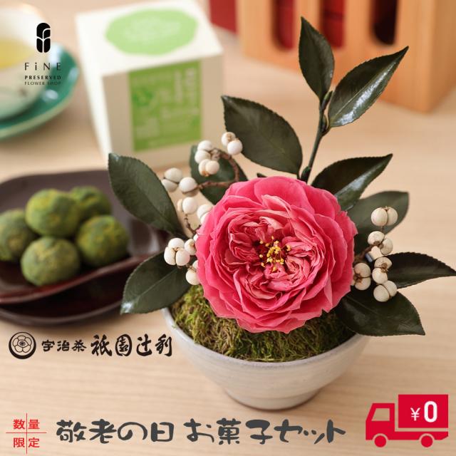 敬老の日 花椿(はなつばき)お菓子セット 数量限定