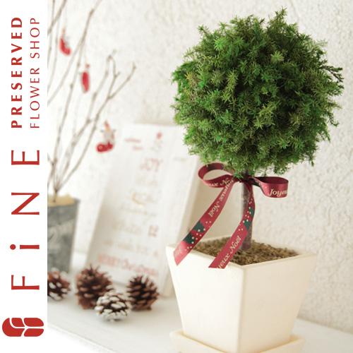 クリスマス/グリーンボールトピアリー