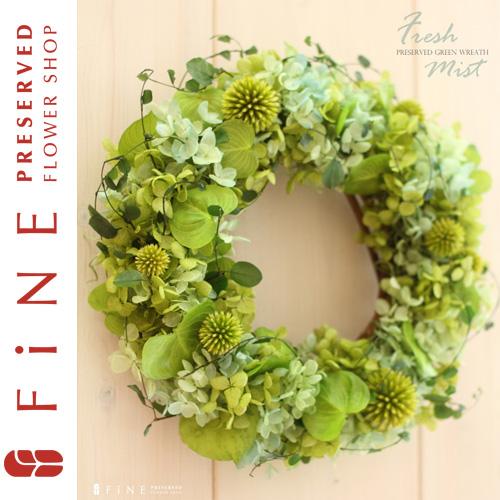 フレッシュミスト 枯れない観葉植物/リース/開店祝い/北欧インテリア/開業祝い【有料バッグ:リースM対応】