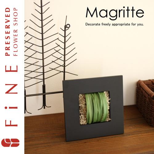 マグリット|インテリアグリーン/壁掛け/観葉植物/開店祝い/開業祝い/ギフト【有料バッグ:M対応】