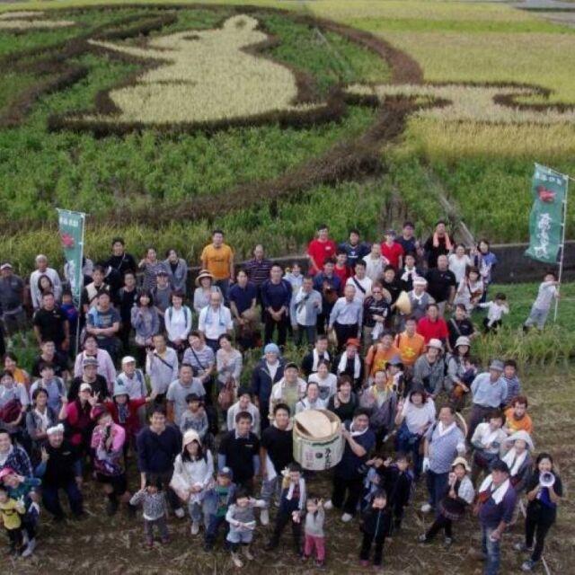 稲刈り2017