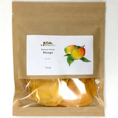 【有機原料使用】マンゴー40g【ネコポス】