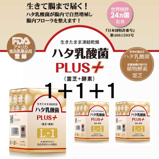 【アウトレットSALE】1+1+1=3箱お得セット ハタ乳酸菌 PLUS+ (霊芝+酵素)L-1【送料無料】※賞味期限は2021.1末までの商品となります。