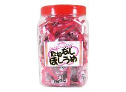 【駄菓子のまとめ買い・梅・昆布系の駄菓子】 たねなしほしうめポット入り(100個)【タクマ】