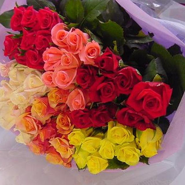 お任せ60本の薔薇だけ花束A(40cmの薔薇 60本)◆