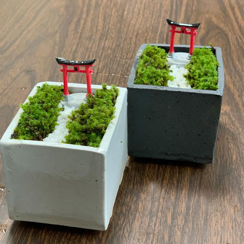 苔盆栽 鳥居