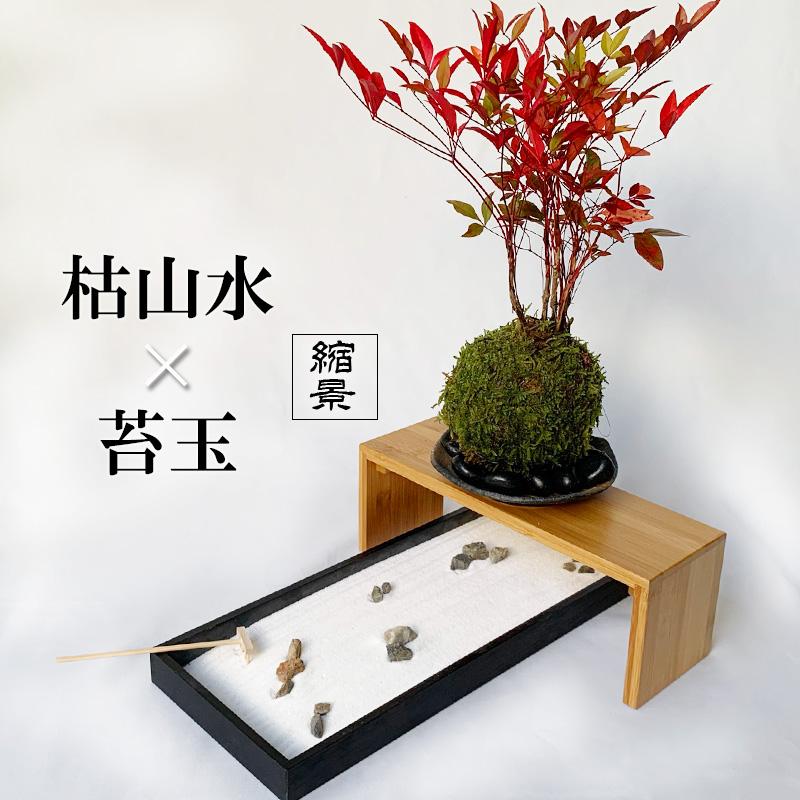 南天 龍安寺