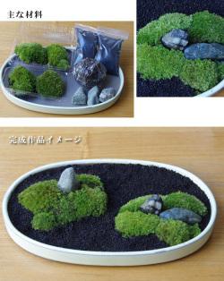 苔盆栽富士砂キット