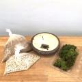 盆栽キット信楽焼茶鉢