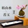 【枯山水×苔玉】~枯山水(龍安寺)+旭山桜苔玉器・天然孟宗竹飾り台セット
