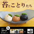 モスモスシリーズ 作家 真山茜氏【モスコトリ3羽・受け皿(黒・グレー系)セット】