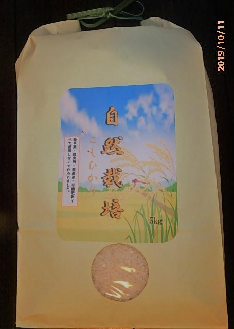 令和元年産!自然栽培米こしひかり玄米5キロ【安島農園】令和新商品☆