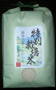 【新米】食べ比べコンテストで1位!いわきの特別栽培コシヒカリ精米5kg【安島農園】