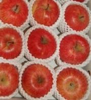 ★単品箱★今年のりんごは特においしい!蜜入り「フジりんご3kg」福島県産★予約販売★12月初旬から順次発送★全国送料無料
