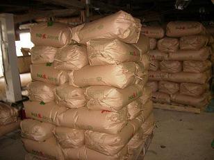 【定期購入】<毎月1日をお選びください>コシヒカリ精米20kg