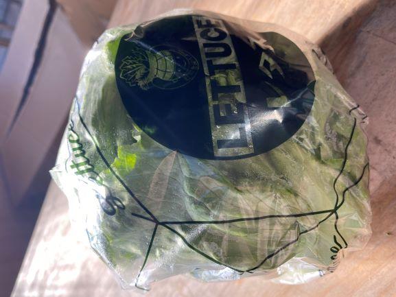 ★単品★初登場 『EMレタス』 農薬不使用!有機栽培!レタス本来の味を楽しめます♪