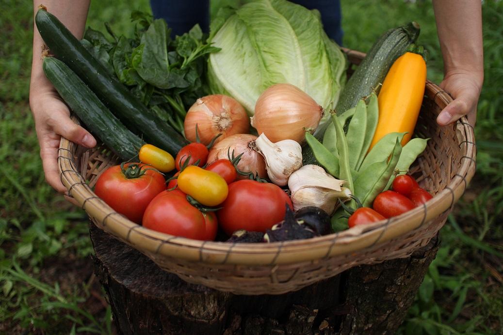 <次回到着12/28(月)をご指定ください>第4月曜日にお届け♪毎月お届けのセット野菜。がんばろう福島「ふくしま新ブランド」