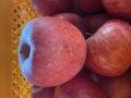 ★単品★【超おすすめ】蜜入りフジりんご1個73円! 多少キズありですが味に変わりはなし / お一人様7個まで