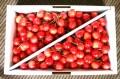 【予約販売】あともう少し!おいしいさくらんぼの季節がやってきます!「佐藤錦」♪たっぷり1kg