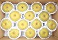 化学肥料を使わない果物づくり!フルーツファームこんのの梨たっぷり5kg♪