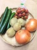 二本松農園の夏の時期だけのおいしさ野菜セット♪