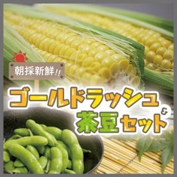 ゴールドラッシュ茶豆セット