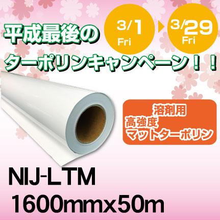 2019ca-ltm-1600x50m