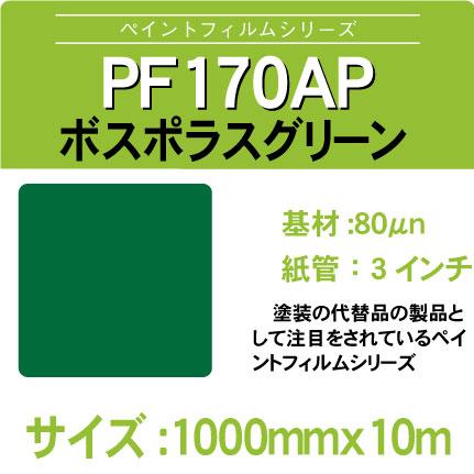 PF170AP-1000x10m