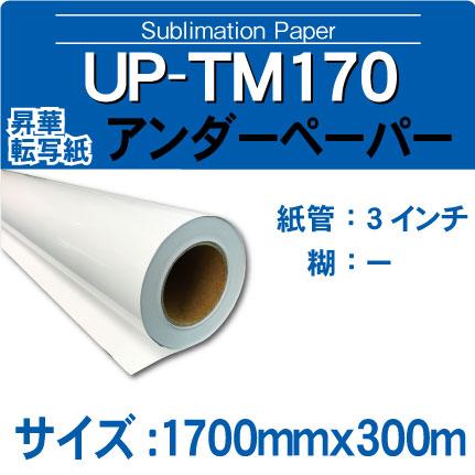 up-tm170-1700x300m