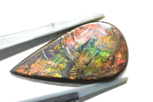 アンモライト【2】天然石ルース・カボション(12×9mm)
