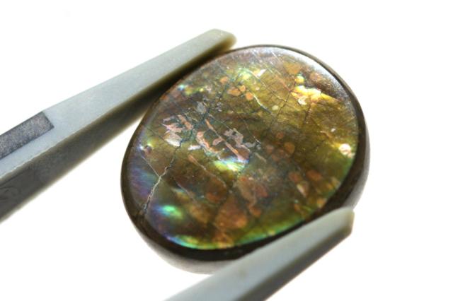 アンモライト【8】天然石ルース・カボション(12×8.5mm)