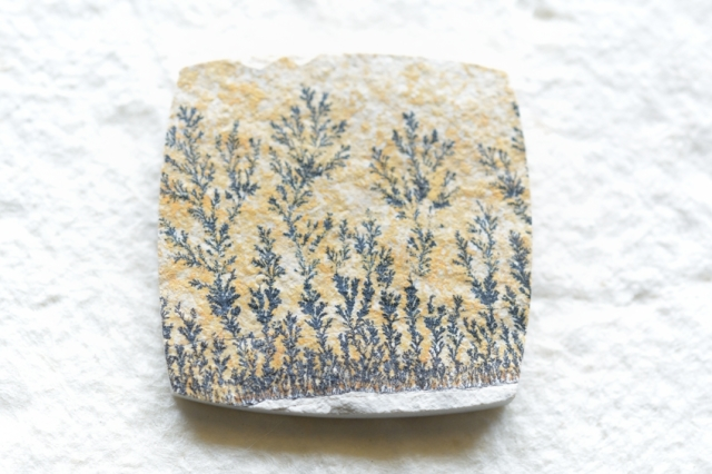 ジャーマン・デンドライト【2】天然石ルース・カボション(30×30.5mm)