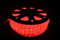 10mm2芯、LEDロープ(チューブ)ライト、レッド、50m