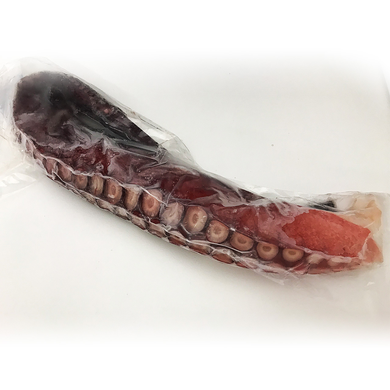 大場水産 特大根室産タコ【真蛸】