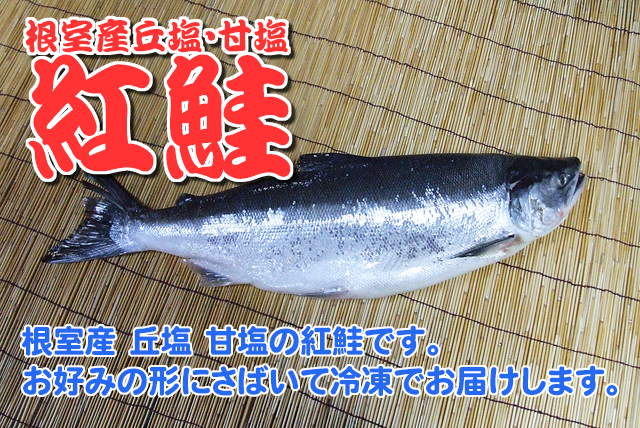 根室魚河岸 茂勝 根室産紅鮭 1尾