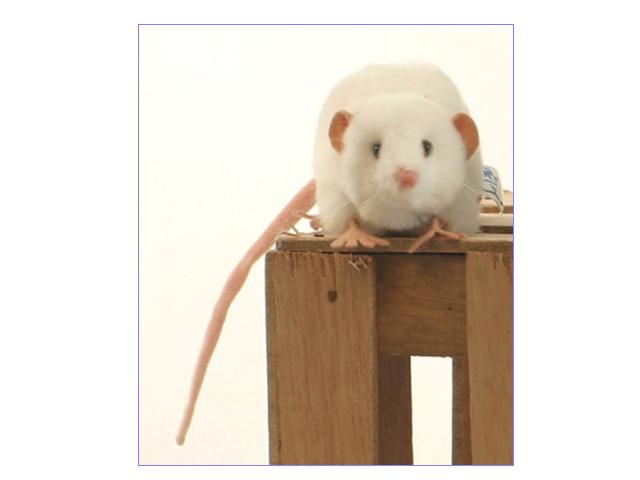 HANSA/ハンサぬいぐるみ 白ネズミ 12cm