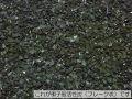 再生ヤシガラ炭活用 50L詰め