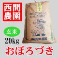 おぼろづき玄米20キロ