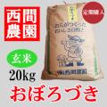 おぼろづき玄米20キロ定期配送