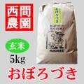 玄米おぼろづき5kg
