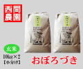 おぼろづき玄米20キロ小分け
