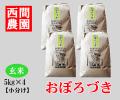 おぼろづき玄米5キロ×4