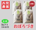 おぼろづき玄米5キロ×4定期配送