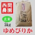 玄米ゆめぴりか5kg